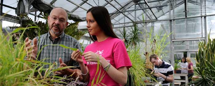 Horticulture (ASCT)